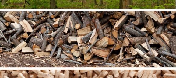 le bois de chauffage quand l 39 cologie rencontre l 39 conomie. Black Bedroom Furniture Sets. Home Design Ideas
